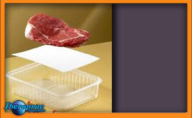 absorbente bandeja con marco 4